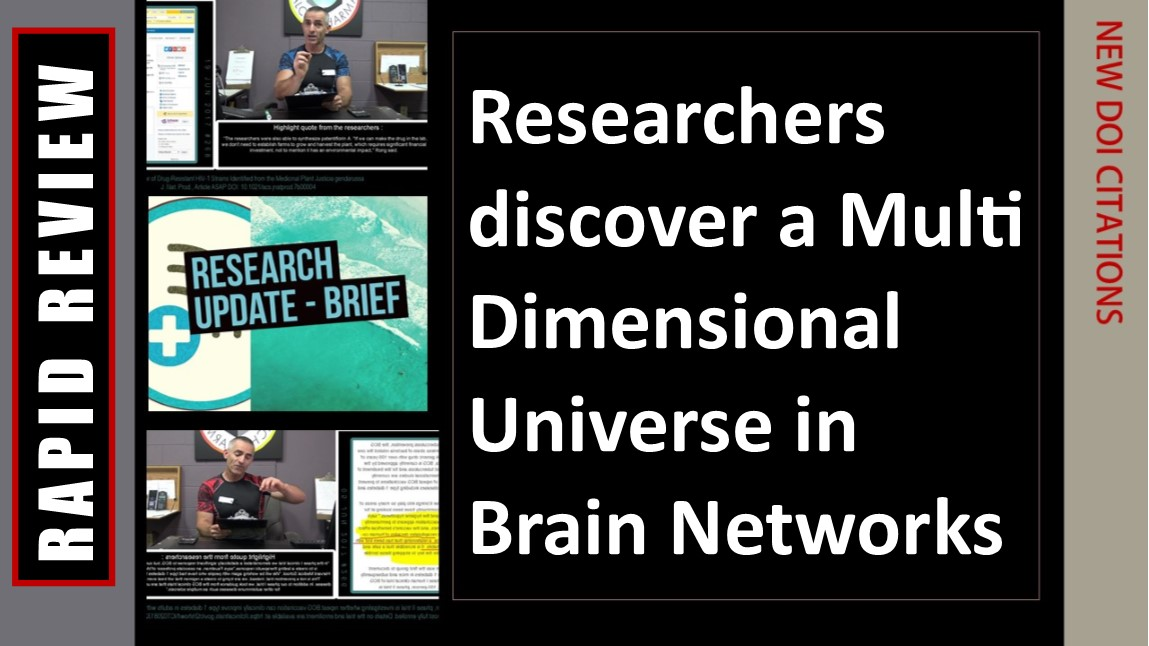 Brain operates in up to 11 dimensions