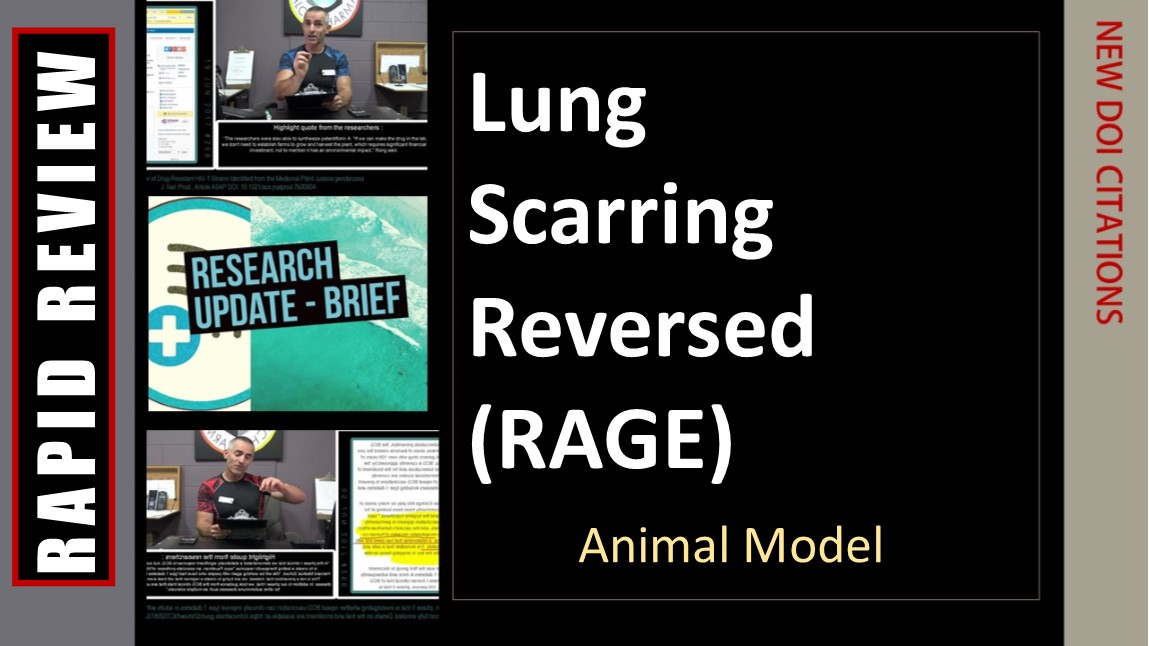 Lung Scarring Reversed